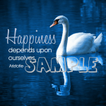 Inspirational Graphics Happiness 32 Pack