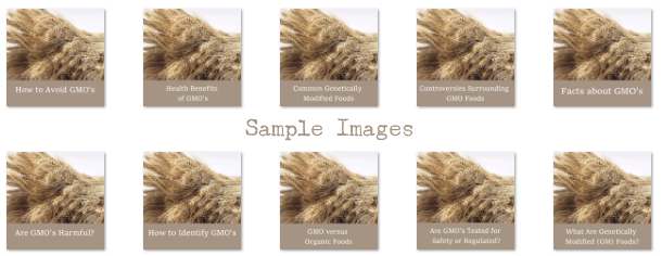 sample images content marketing plr